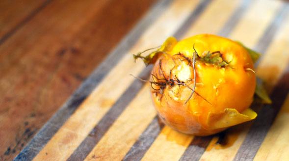 Orange beetroot